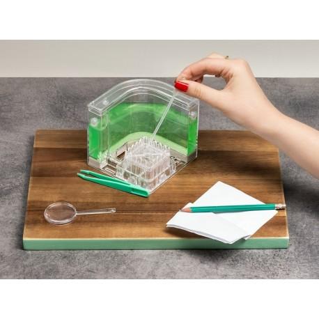 Podsvietené antquarium DELUXE - zelené