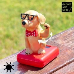 Solárny psík s kývajúcou hlavou