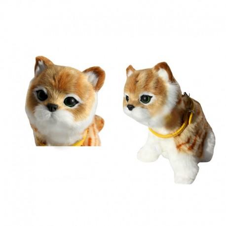 na malé mačička