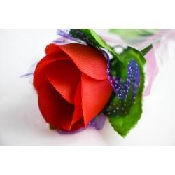 Svietiaca ruža Ema