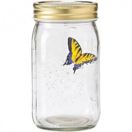 Večný motýľ - Pink Morpho