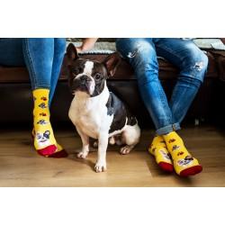 Veselé ponožky HESTY - Francúzsky buldoček