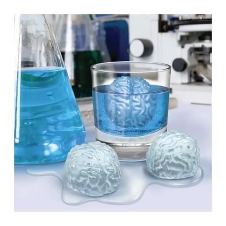Ľadove mozgy