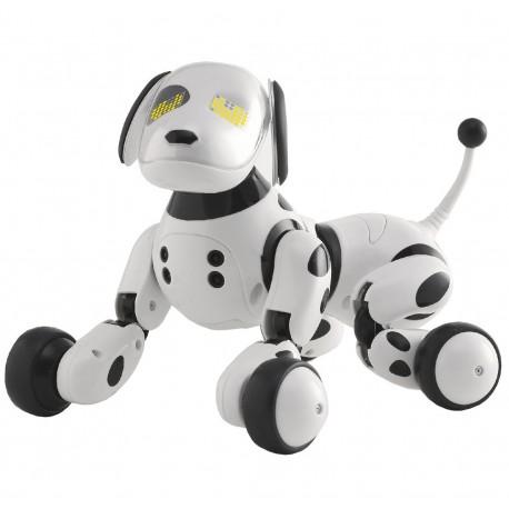 Interaktívny robopes